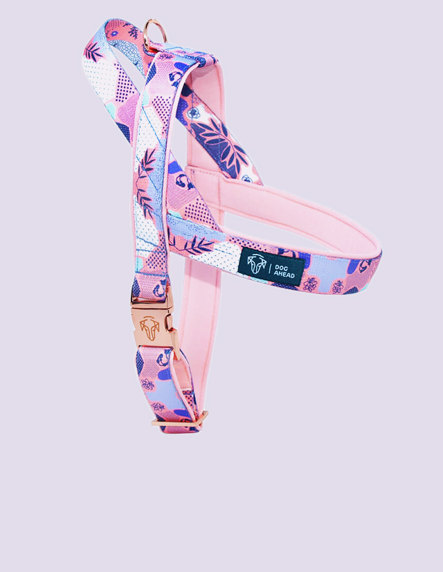 product_front_page_harness_03