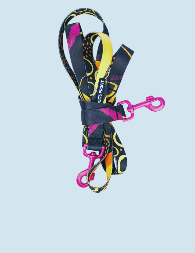 product_front_page_leash_03